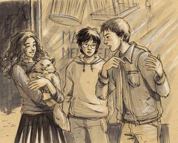 Le trio devant la ménagerie magique après l'achat de Pattenrond