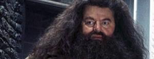 Hagrid dans les films