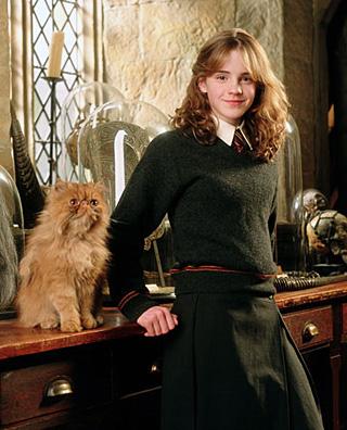 Hermione et Pattenrond dans PA/f