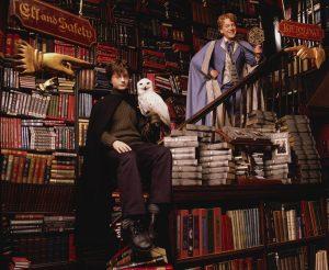 Harry, Hedwige et Lockhart chez Fleury et Bott dans CS/f