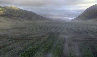 Le labyrinthe dans CF/f