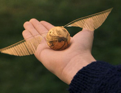 Livre projection Quidditch
