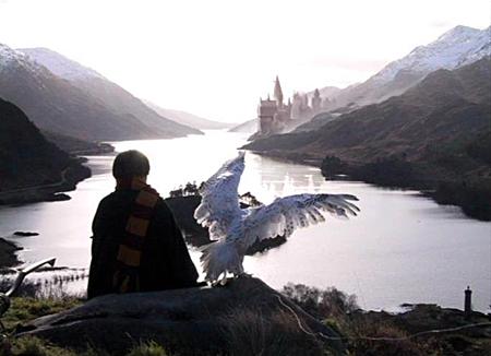 Harry et Hedwige dans CS/f (scènes coupées)