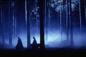 Retenue dans la forêt dans ES/f
